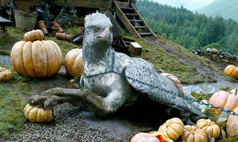 Harry Potter and the Prisoner of Azkaban, Buchbeak