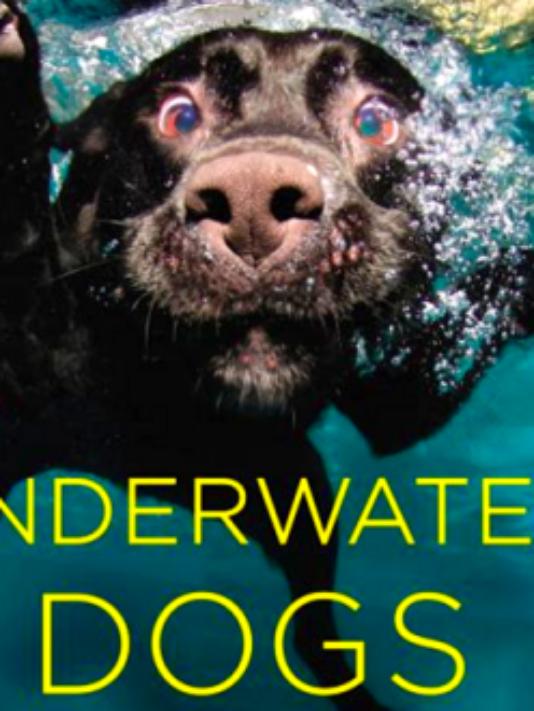 7 underwater dogs Seth Casteel