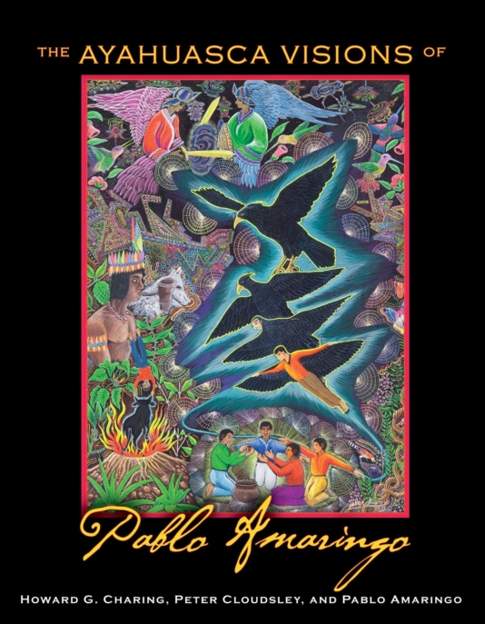 THE AYAHUASCA VISIONS OF PABLO AMARINGO by Howard G Charing Peter Cloudsley Pablo Amaringo