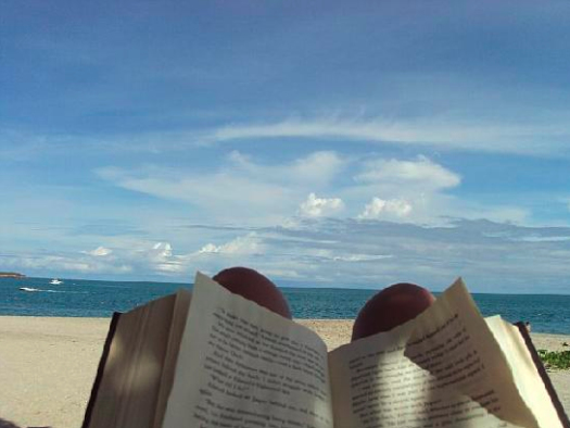 Editor reading on the beach