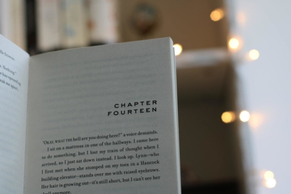 FEATURED IMAGE New York Book Editors 12 9 2019 How to Write a Chapter